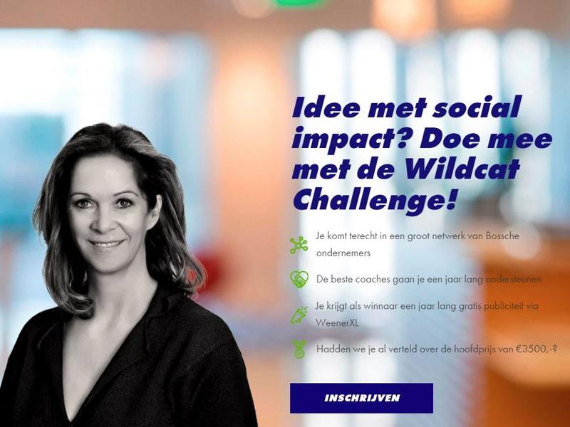Sociaal ondernemerschap - Wildcat Challenge - BIM